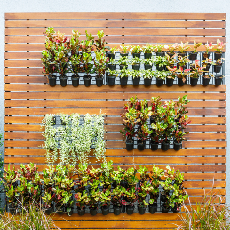 Best Small Space Garden Products