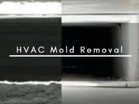 HVAC Mold Removal