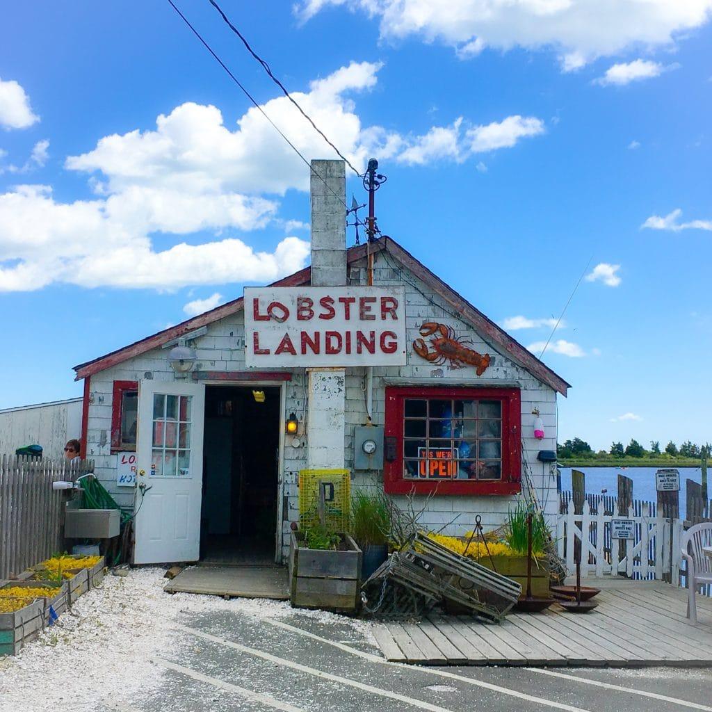 Best Lobster Rolls in New England start at Lobster Landing in Clinton CT