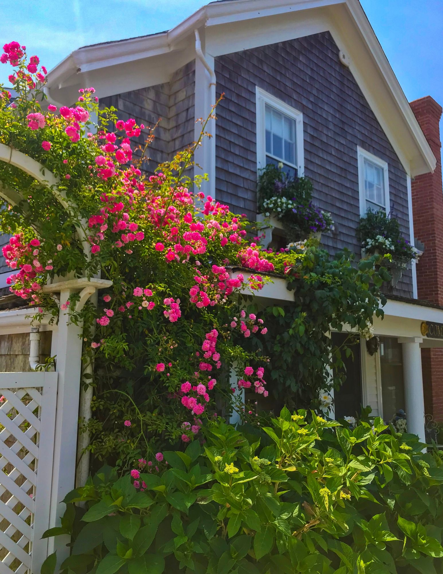 Nantucket Rose Covered Cottages in Sconset-20
