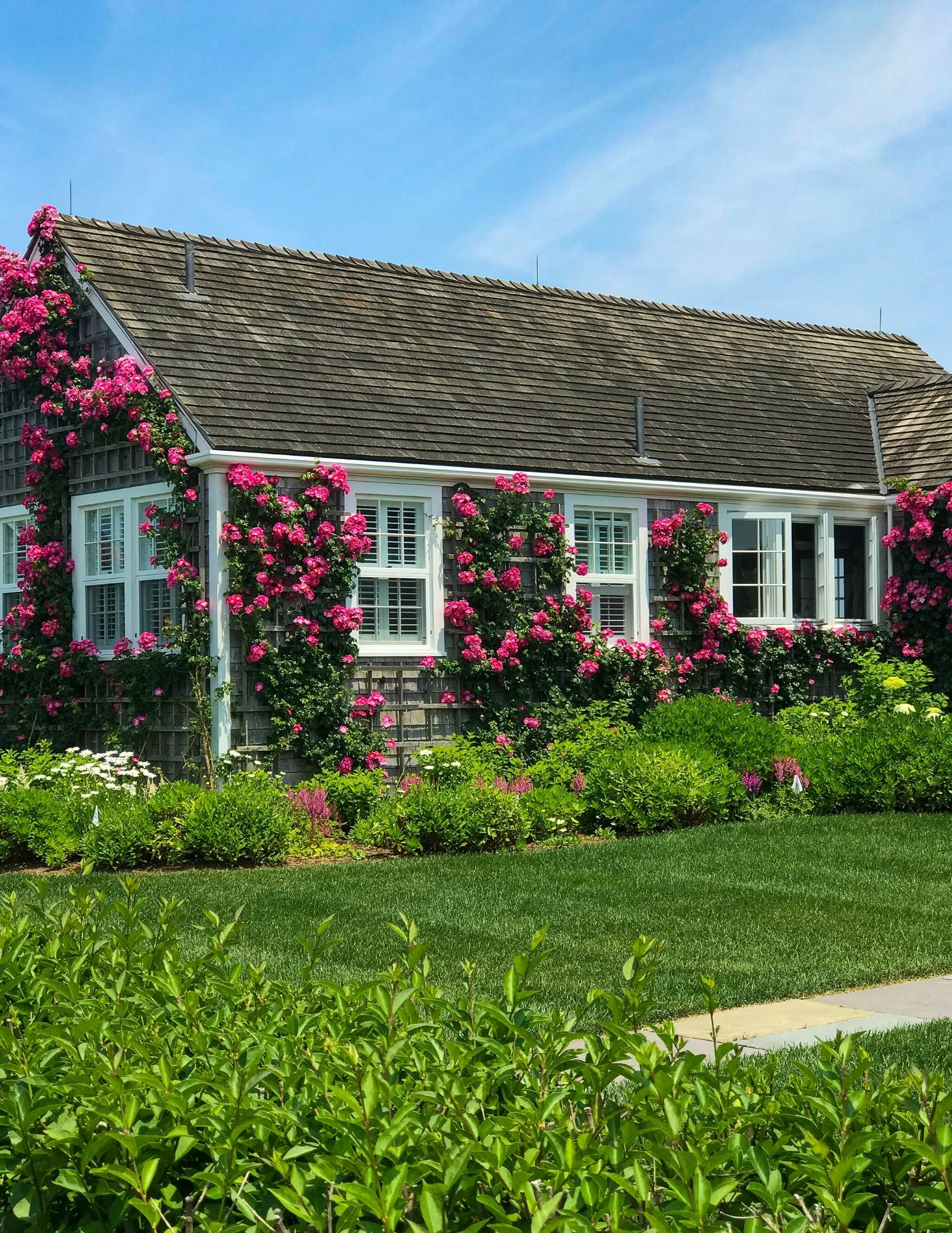 Nantucket Rose Covered Cottages in Sconset-8