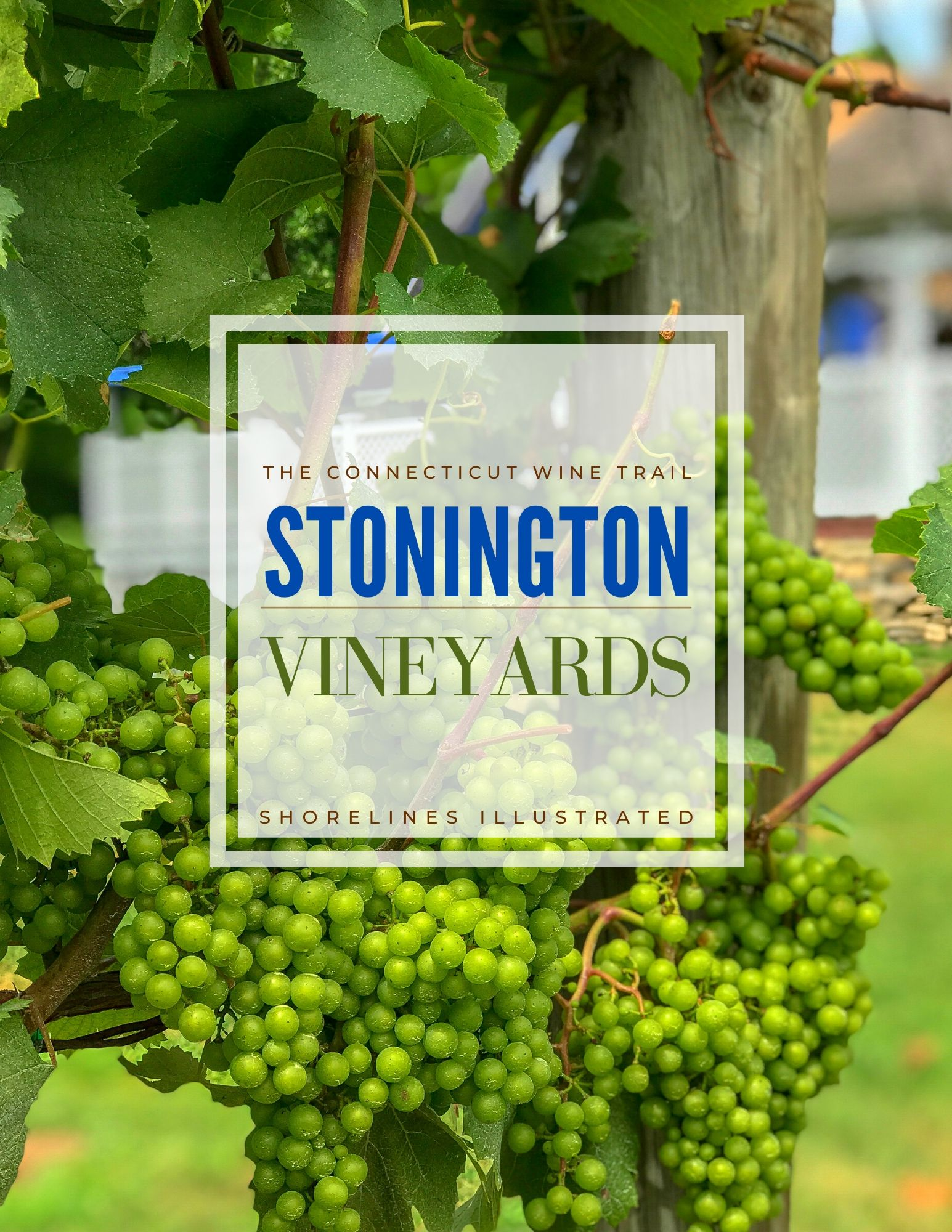 Stonington Vineyards CT Wine Trail-1