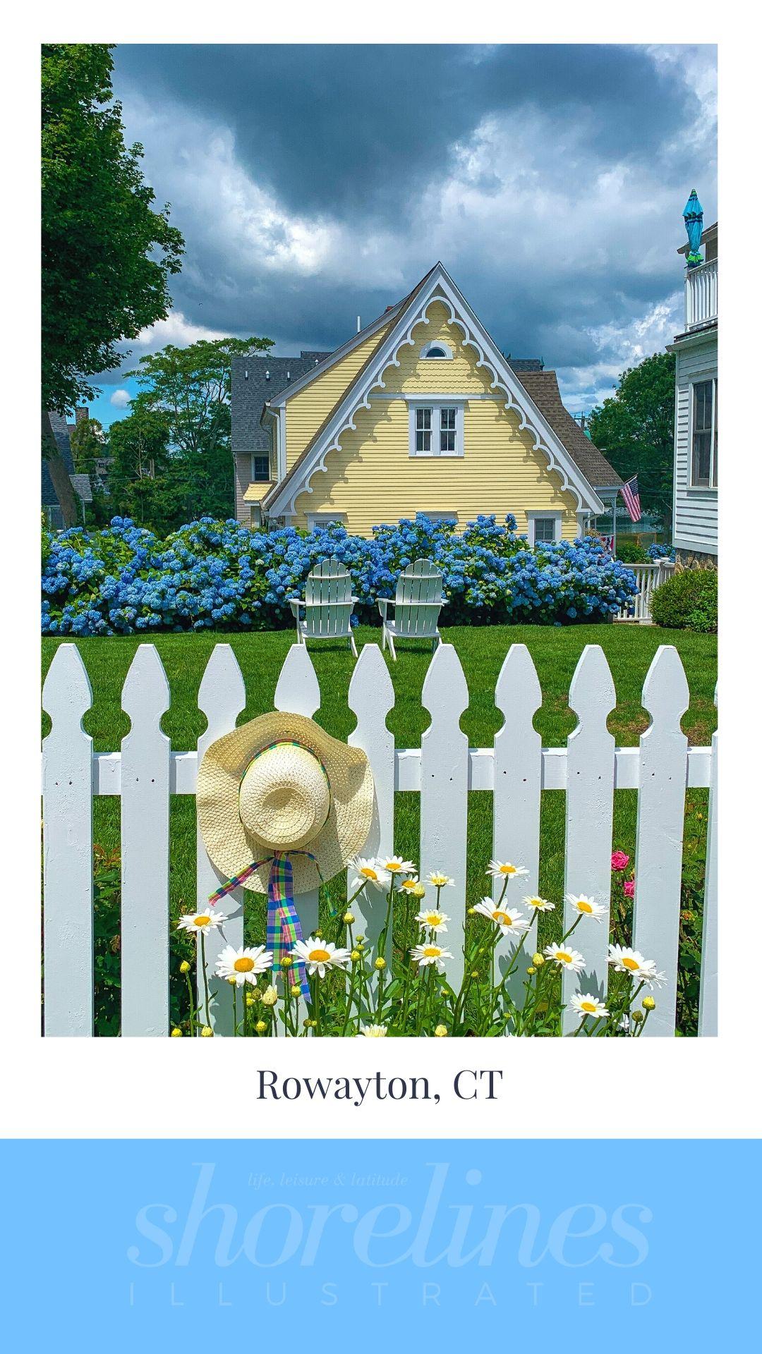 Blue Hydrangeas of New England-10