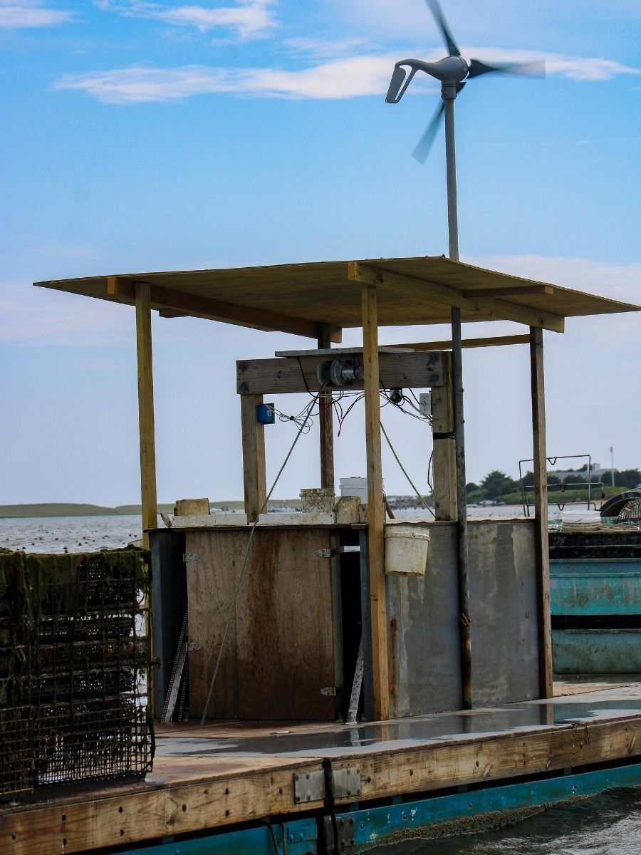 Signature-Oyster-Farm-Tour-Katama-Bay-Oysters-Marthas-Vineyard-3