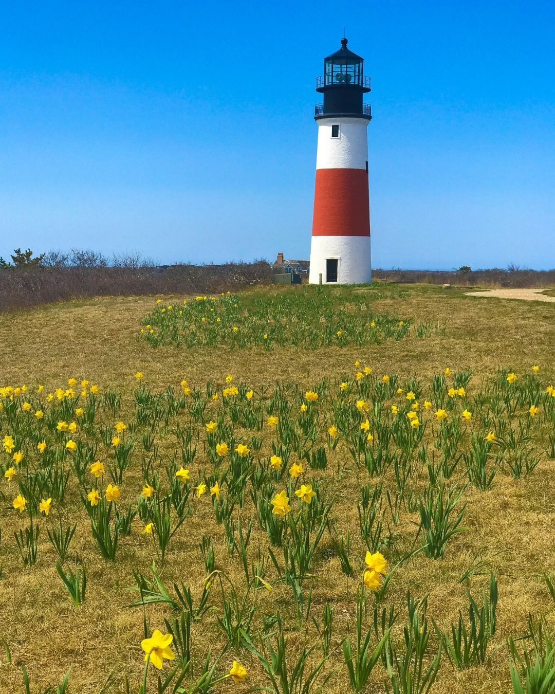 The Nantucket Hotel and Resort is a great choice when looking for places to stay on the island of Nantucket, MA
