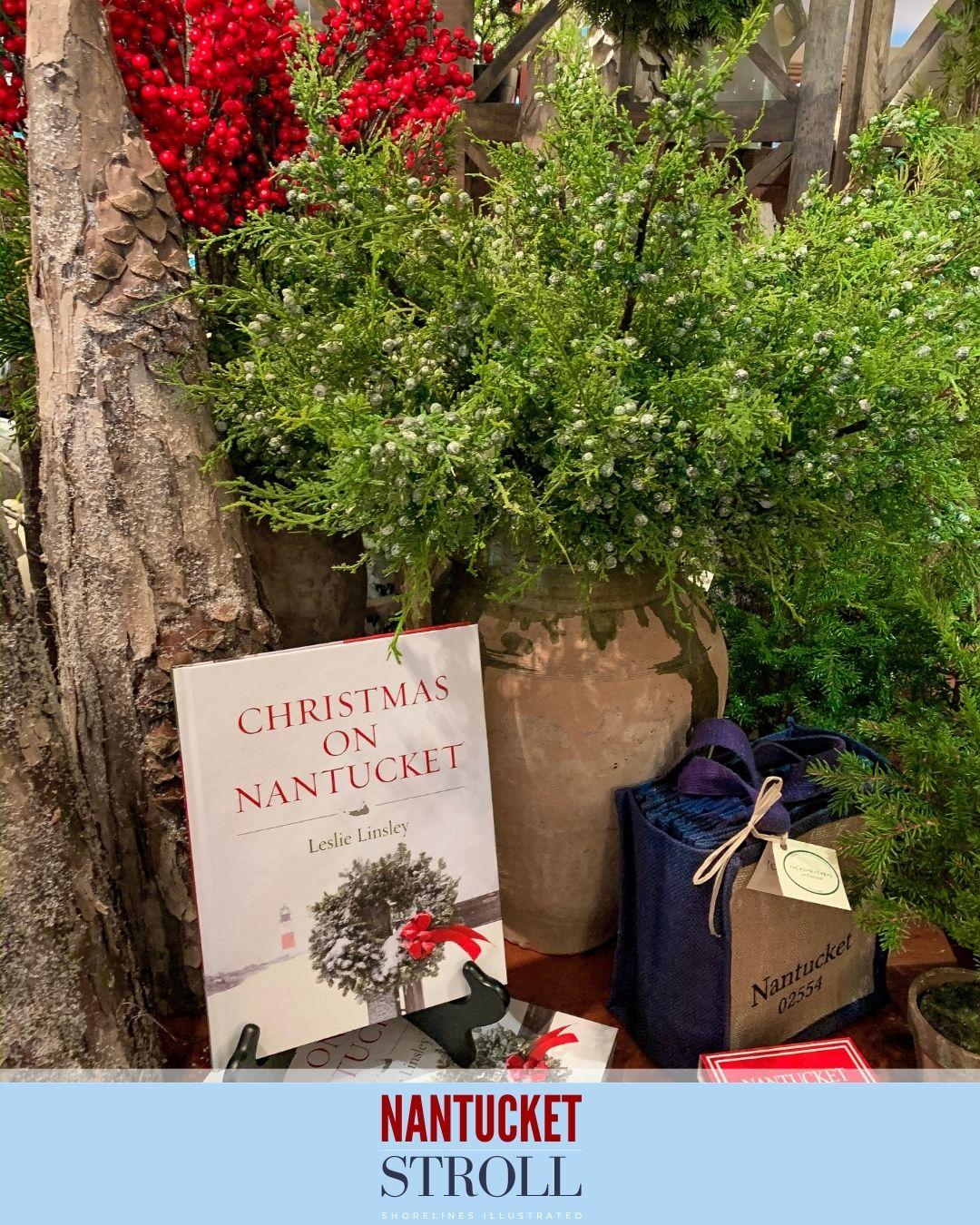 Nantucket Christmas Stroll-11