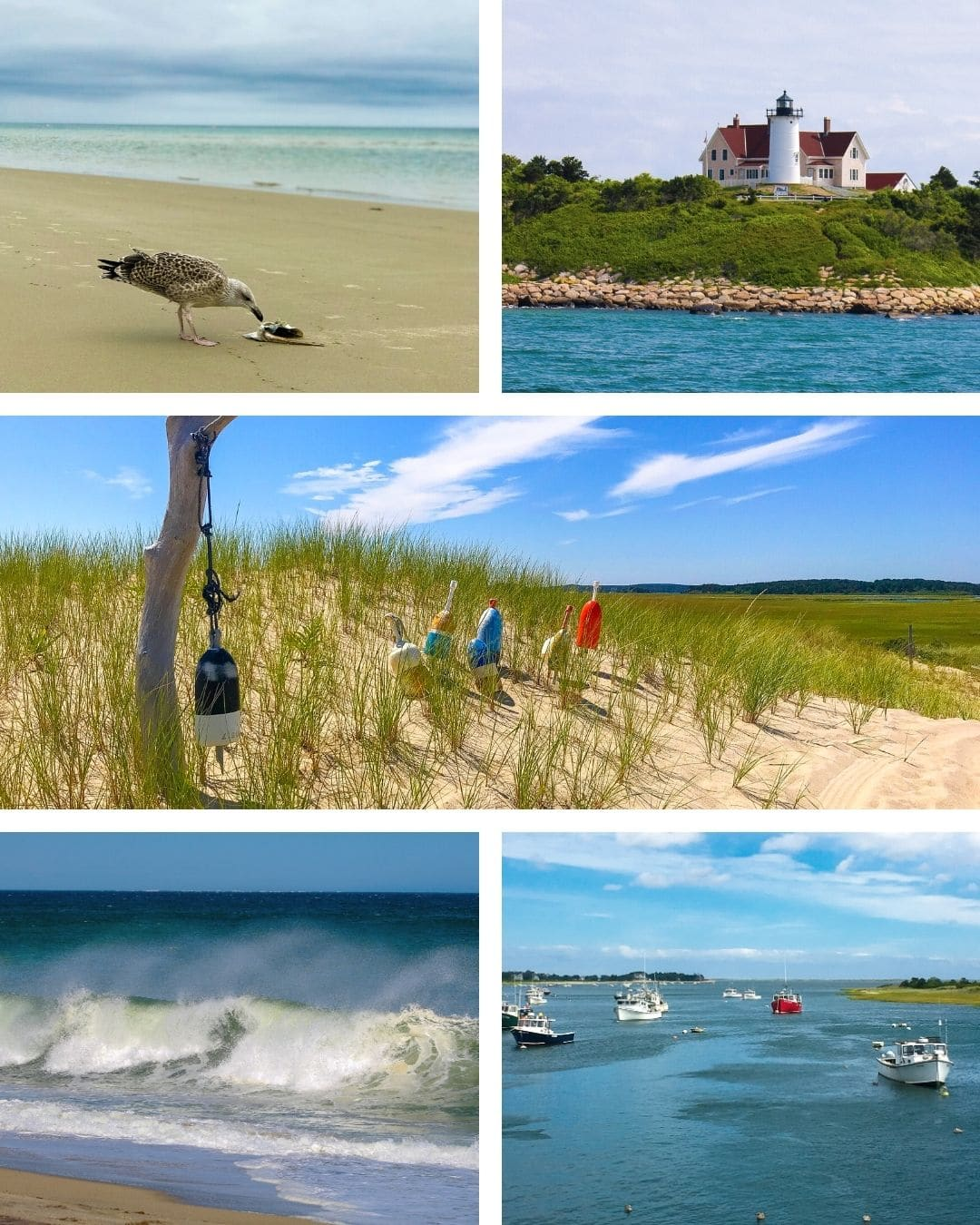 Experience Coastal Glamping at AutoCamp Cape Cod