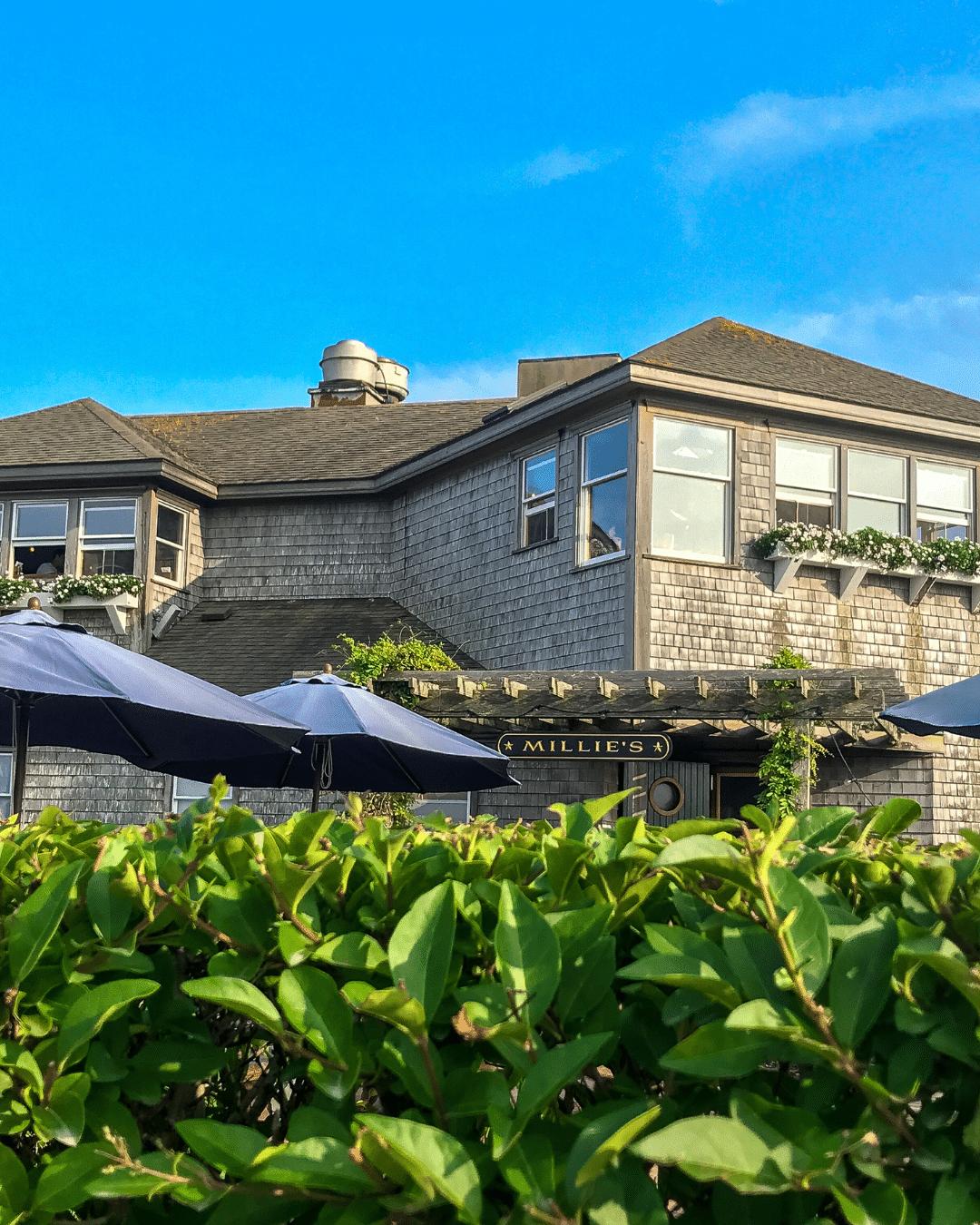 Suburb - Roof