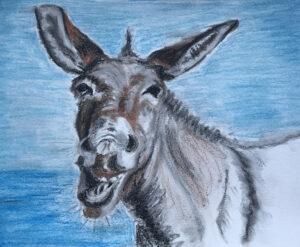 Suzi's Donkey illustration resize