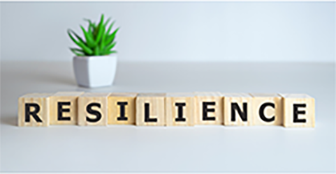 Resilience and the Work-Life Balance an XcelMil Training Course