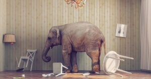 Two Lutheran Elephants: Negligent House Pastors and Divorce