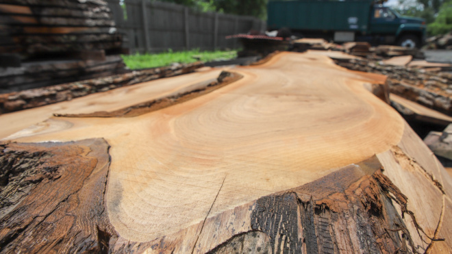 Live Edge Wood Slabs For Sale Chalfont, PA