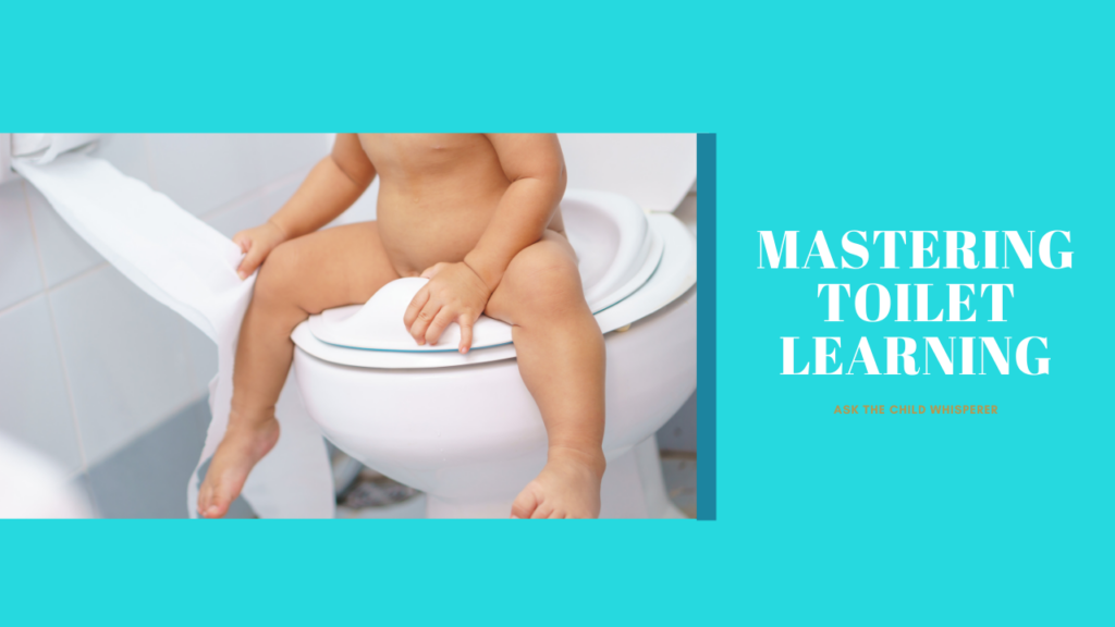 baby toddler on the potty toilet