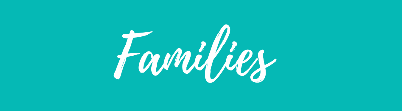 Teal banner with white lettering of Families