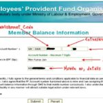 EPFO Account Status