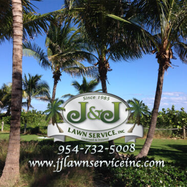 J&J Lawn Service, Inc for all of your lawn service and landscaping needs.