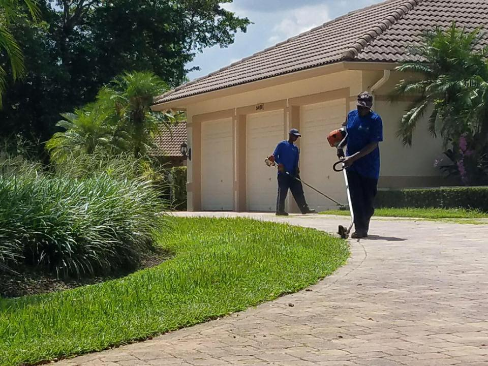 Did you know J&J Lawn Service Inc, provides commercial lawn care?