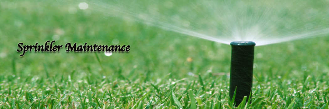 Lawn Care Tip:  Overwatering….Turn off your sprinklers!