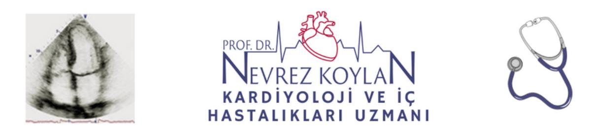 Prof. Dr. Nevrez Koylan