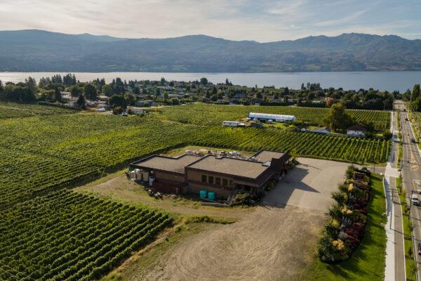 Volcanic Hills WineryAerial Summer Vineyards 6
