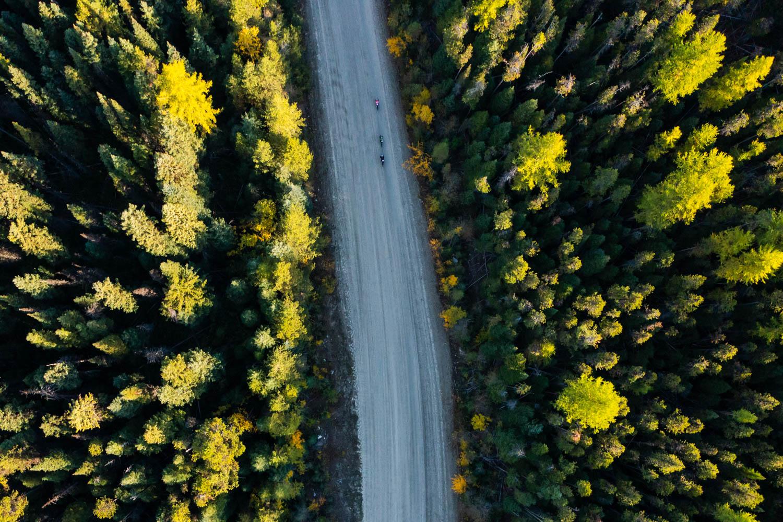 Fall in the Okanagan - stenberg-web-0701
