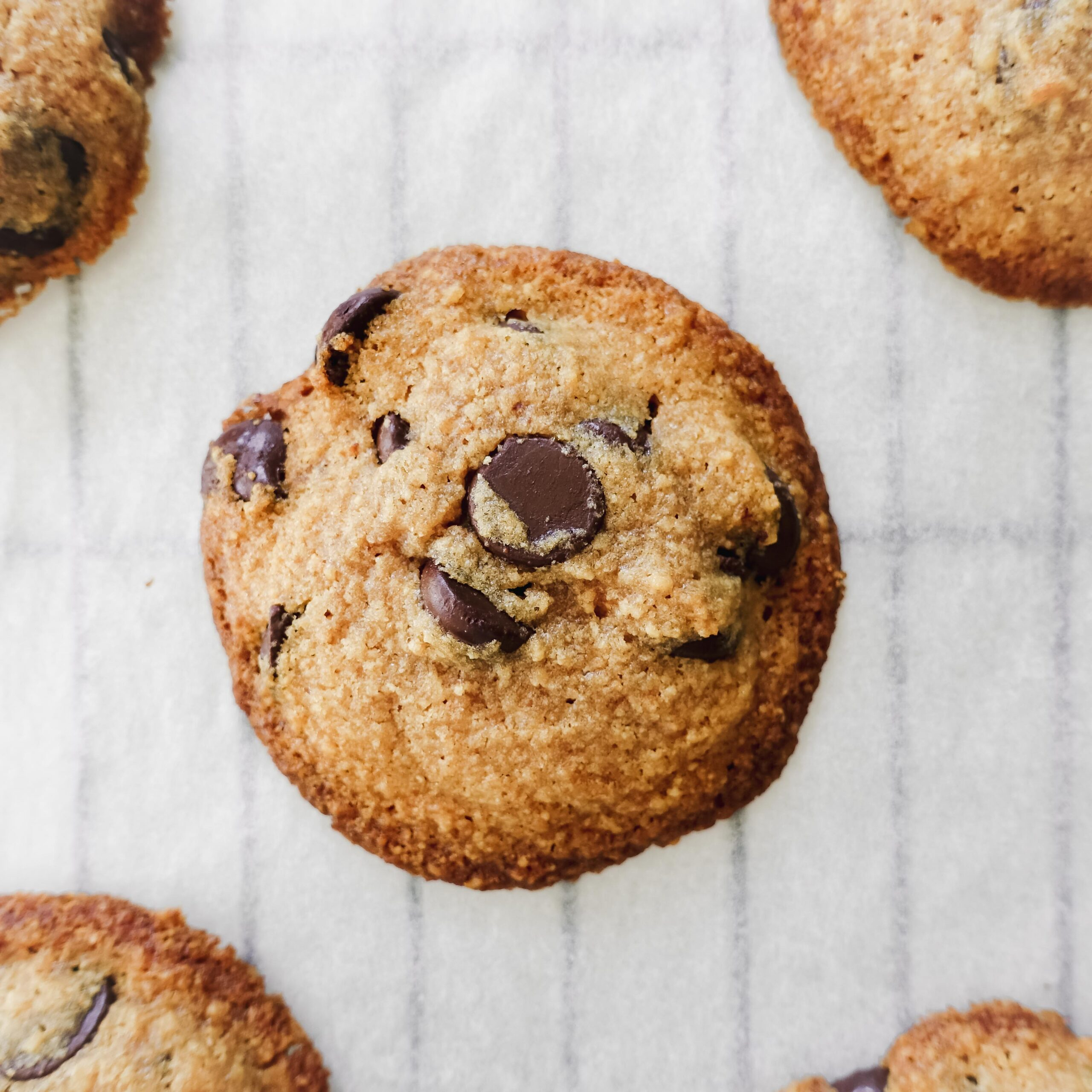 Graham Cracker Chocolate Chip Cookies || Life Above the Clouds