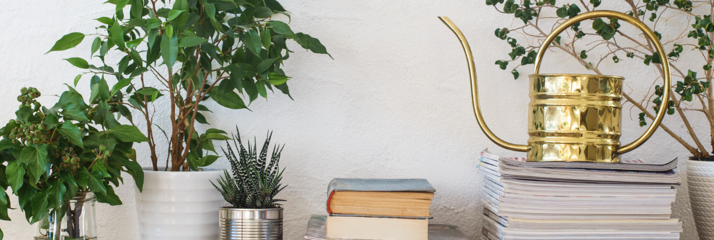 high end watering can in luxury townhome library
