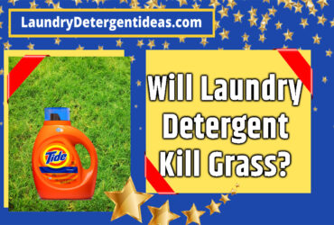 Will laundry detergent kill grass