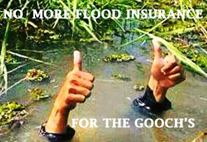 No more Flood Insurance for the Gooches