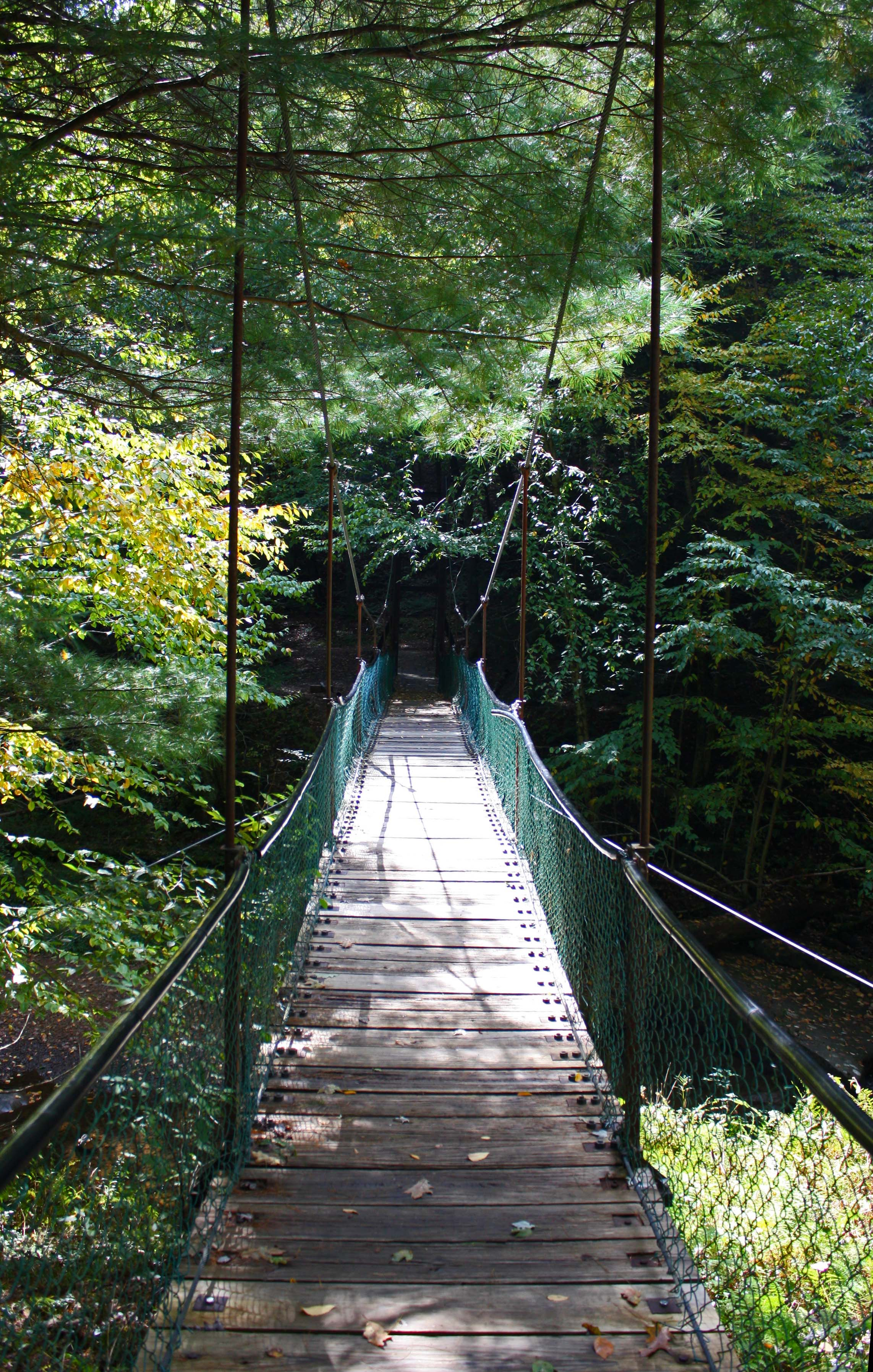 Toms Run Swinging Bridge