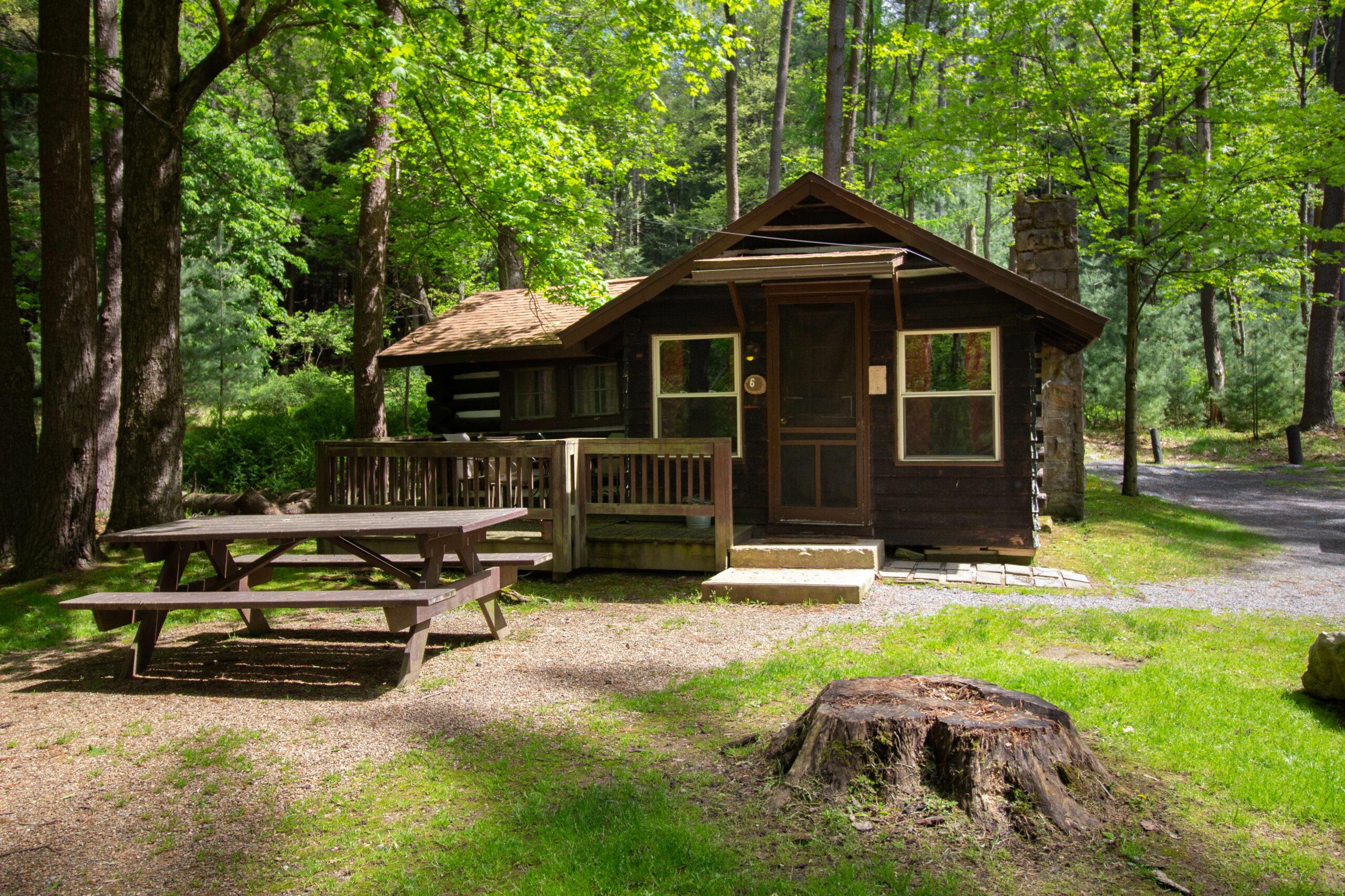 Cook Riverside Cabin 6