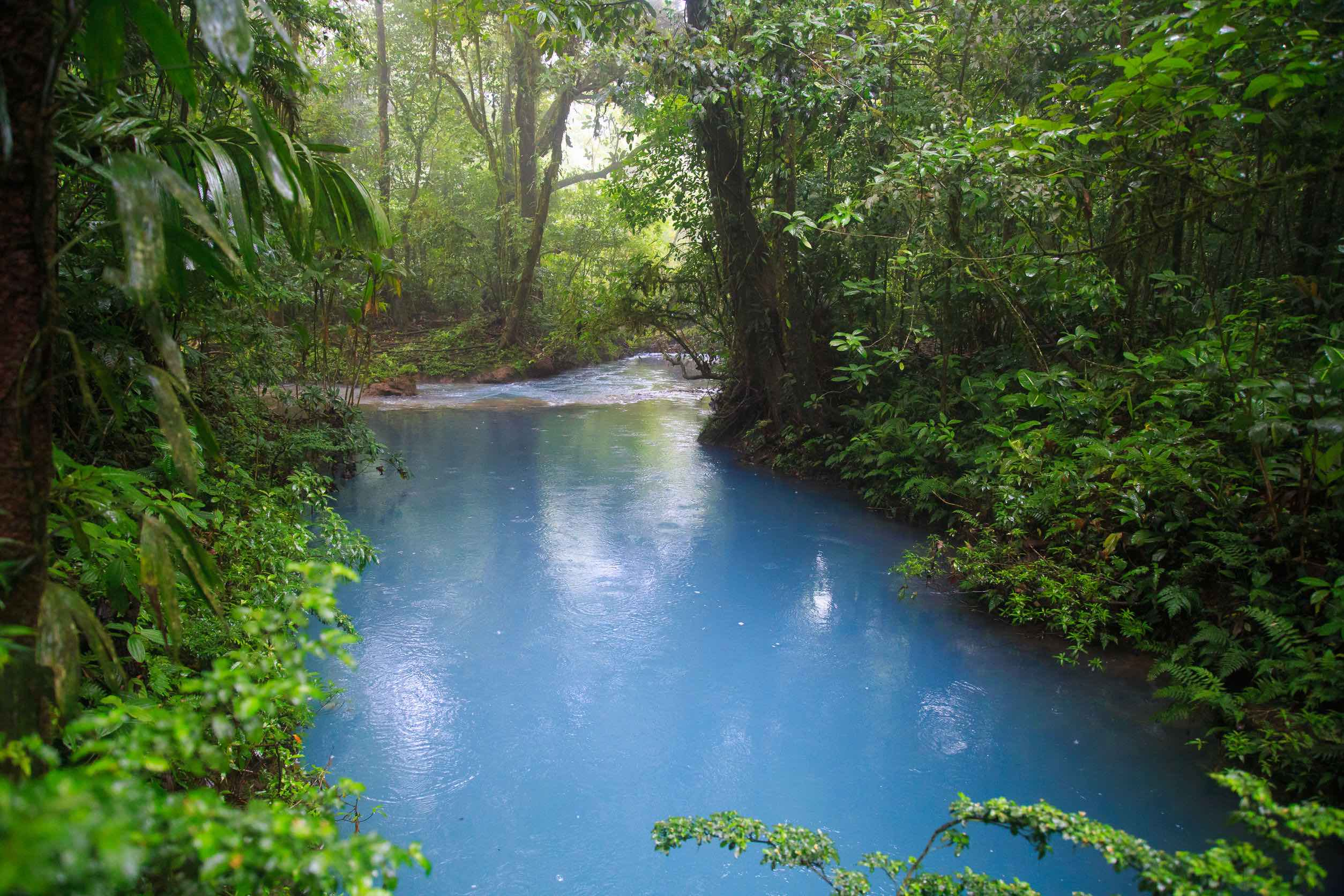 Seasons and Best Times to Visit Costa Rica
