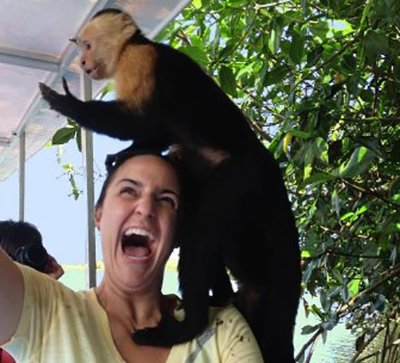 3 Catastrophic Consequences When Tourists Feed Monkeys – Part 2