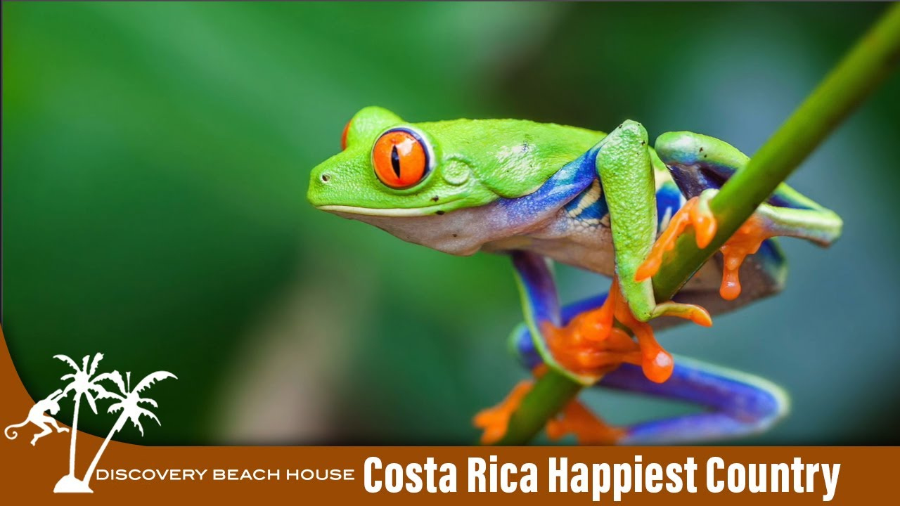 Why is Costa Rica the Happiest Country in the World