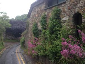 Entering Cwm yr eglwys (cureglis)