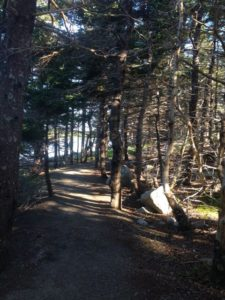 the path at Black Duck Cove