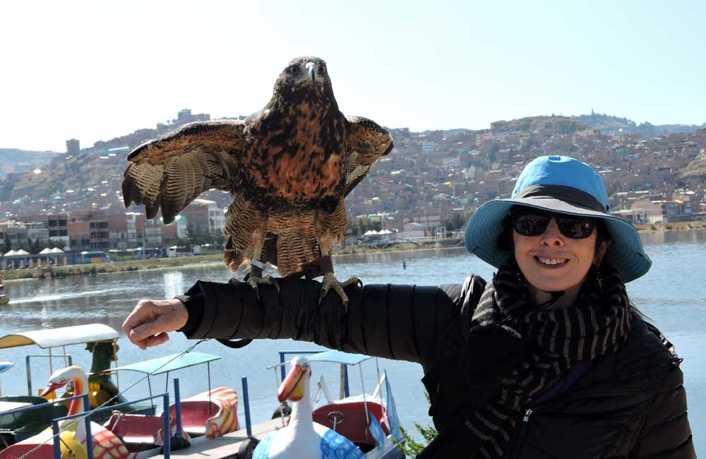 Laura and an Andean Eagle, Peru