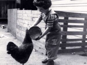 Laura with family chicken 1954