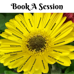 book a session with Dr Jeanette Gallagher