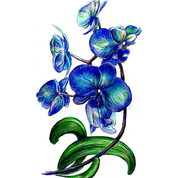 1-Blue-Orchid