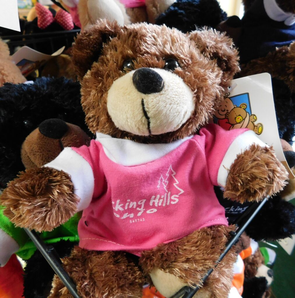 Hocking Hills stuffed bear