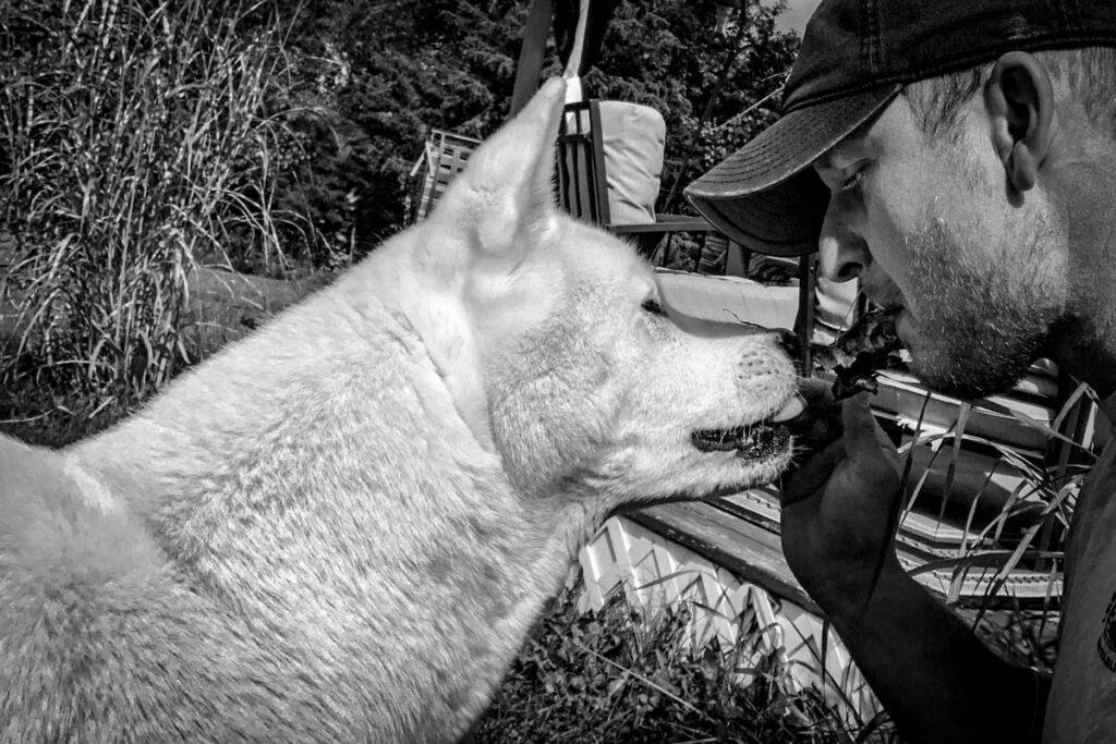 Tomas Banik and his 13yr old American Akita - Sasha. 'Sharing a Bone'.