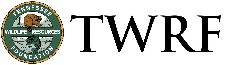 web+logo