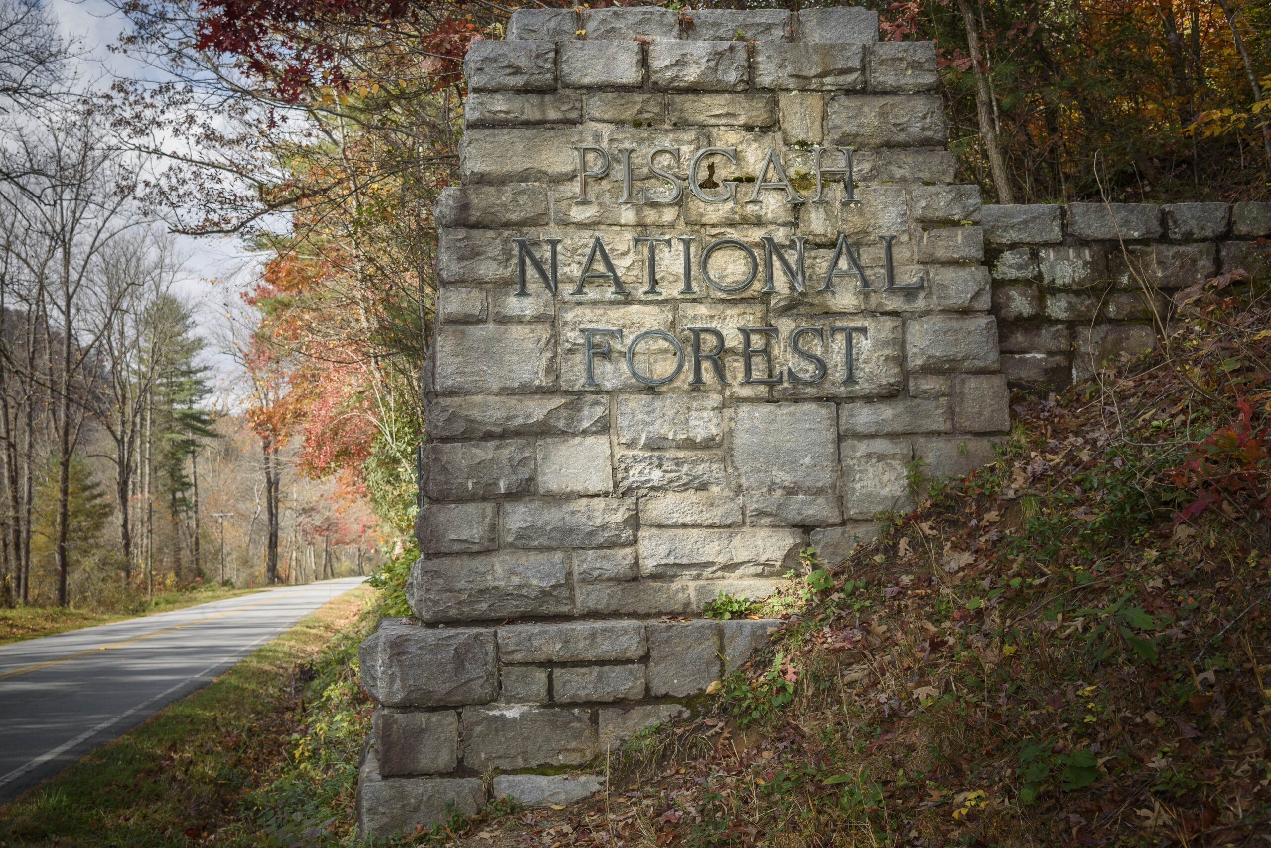3 things to do in brevard nc