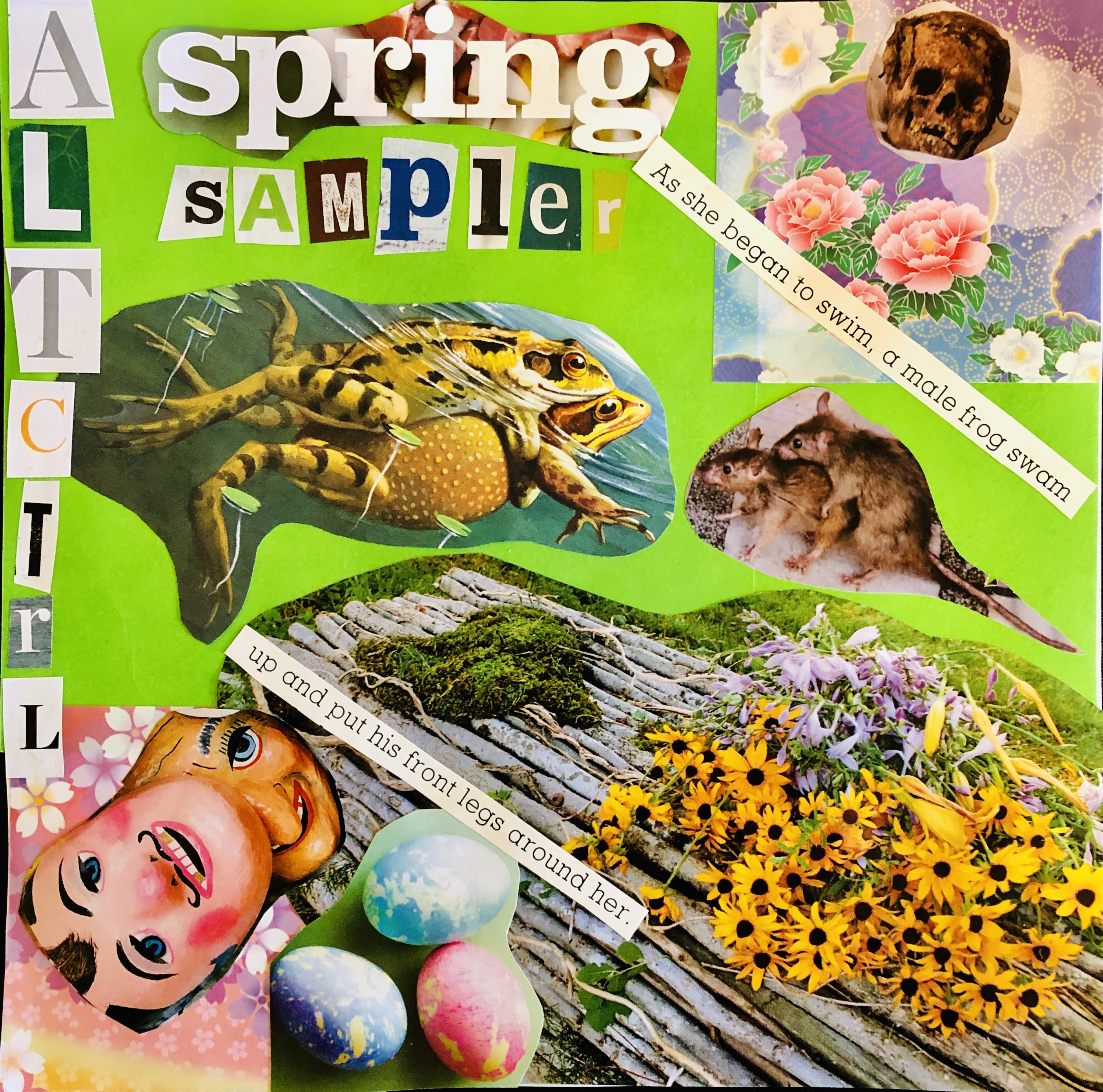 AltCtrl Spring Sampler