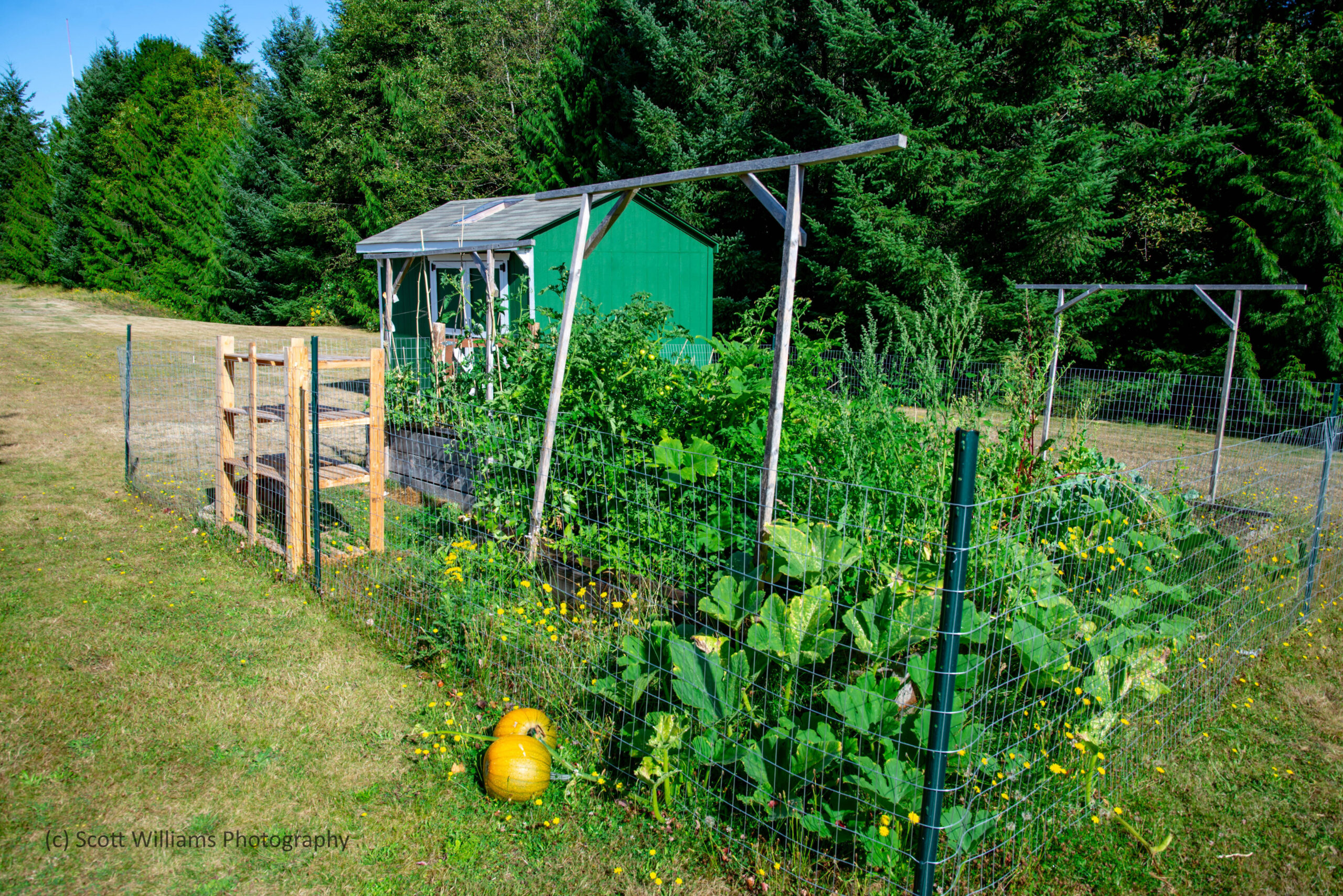 12-Community-garden-and-shed