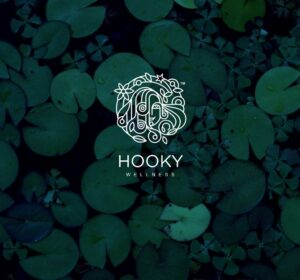 <span>Hooky</span><i>→</i>