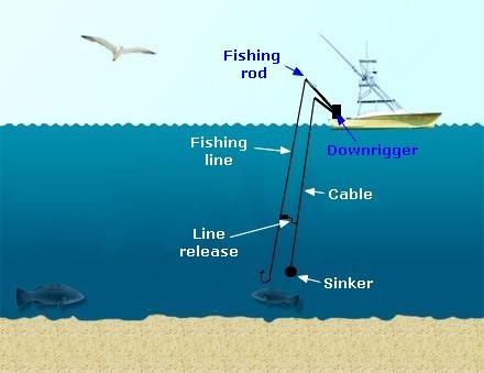 downrigger-fishing.jpg
