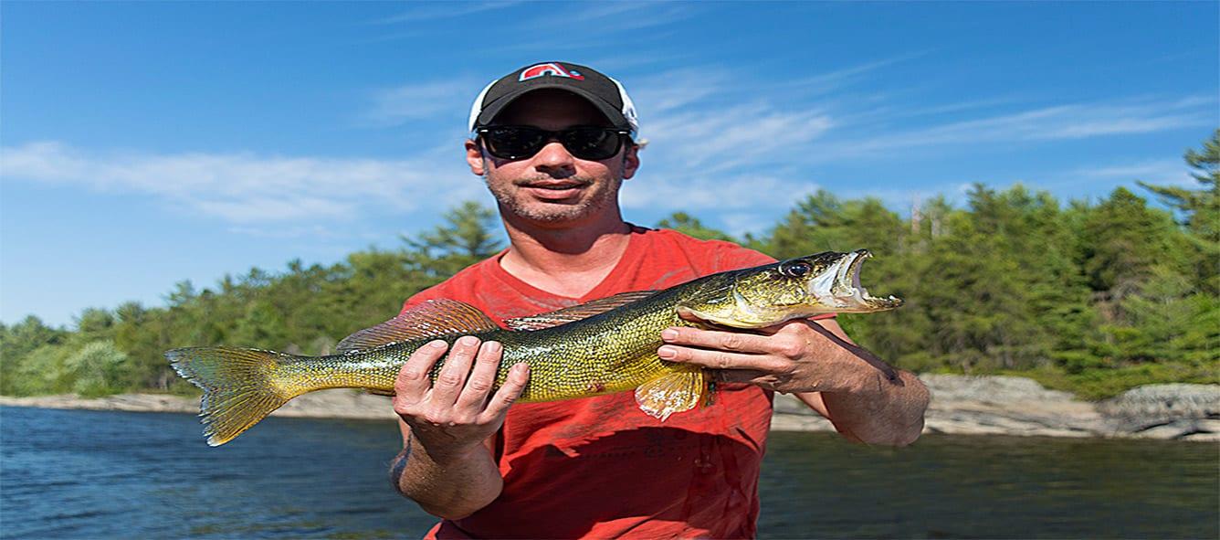 Pickerel, Walleye, French River Delta, Bear's Den Lodge, Fishing Canada, Ontario Travel