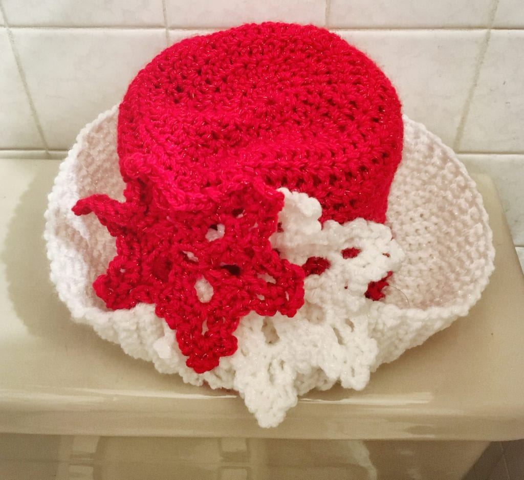 Christmas hat toilet paper cover